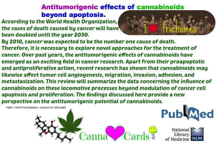 cannabinoids beyond apoptosis
