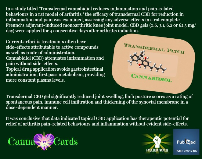 cannacards cbd patch 3
