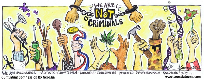 georgia toons we are not criminals