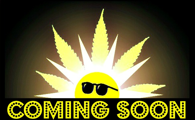 Coming Soon 2 site