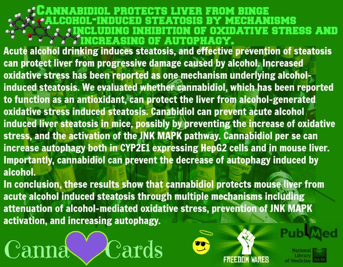CBD for liver 7