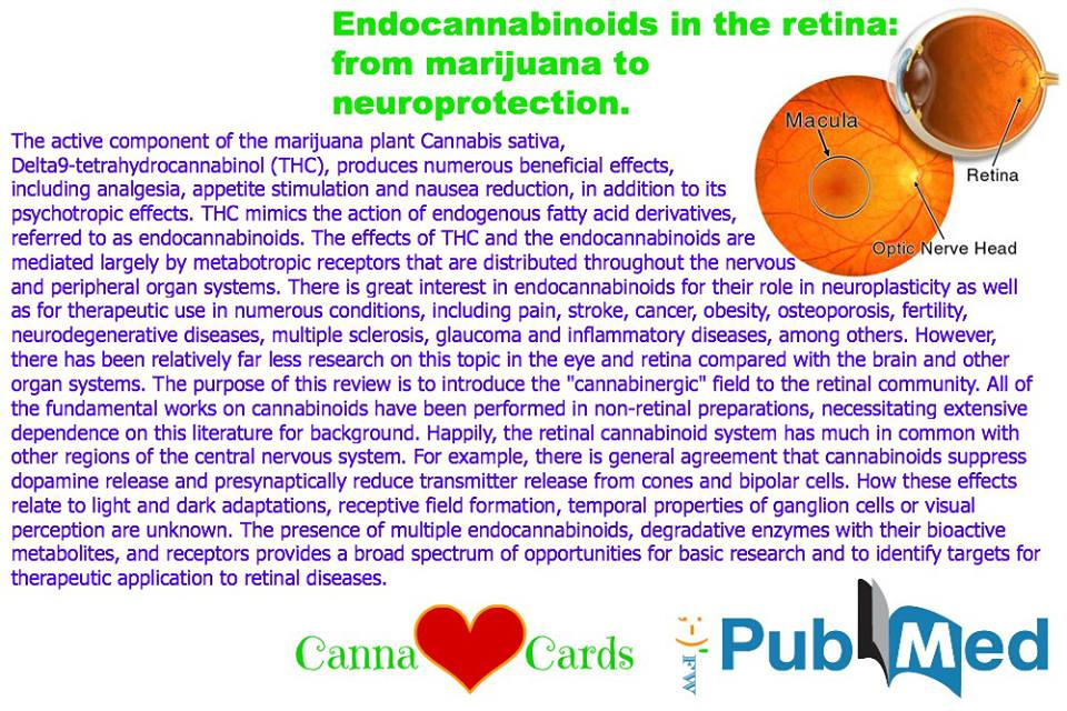 Endocannabinoids in the retina- from marijuana to neuroprotection.
