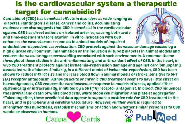 Is the cardiovascular system a therapeutic target for cannabidiol?