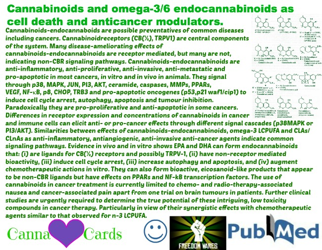 cannabinoid anti cancer site