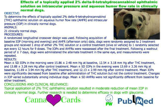 graciesite 2 delta-9-tetrahydrocannabinol ophthalmic solution on intraocular pressure and aqueous humor flow rate in clinically normal dogs.