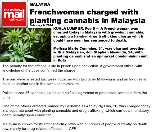 Frenchwoman charged with planting cannabis in Malaysia blog 2