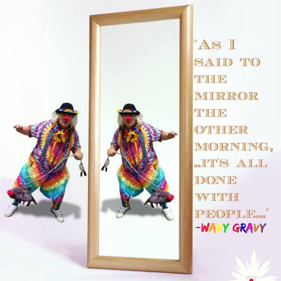 Wavy Gravy Mirrors