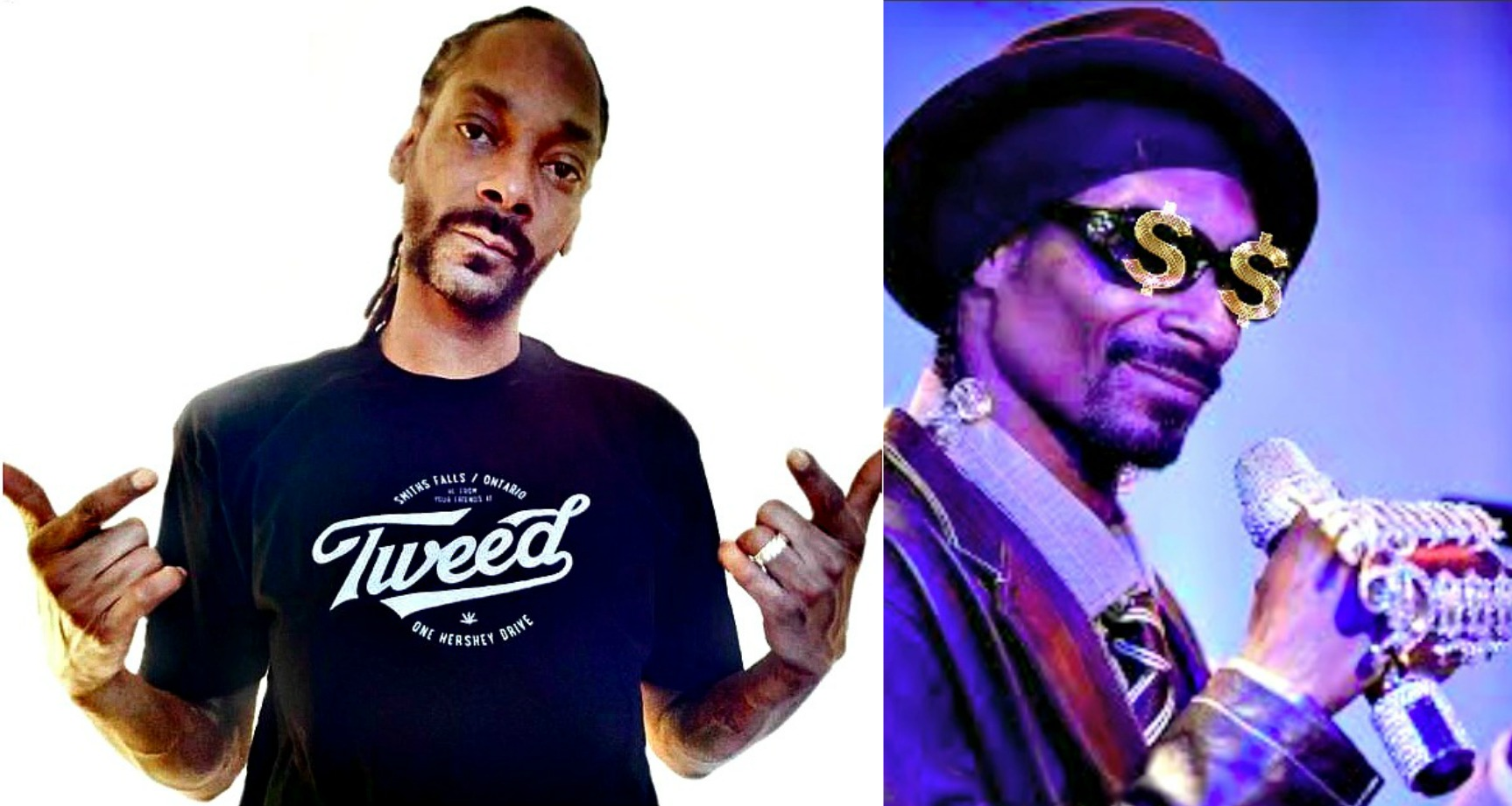 Snoop collage