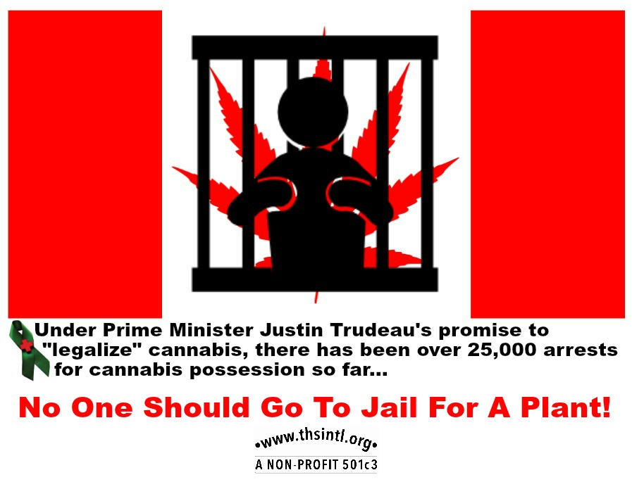Canadian Jail Flag THSI 420 final 100
