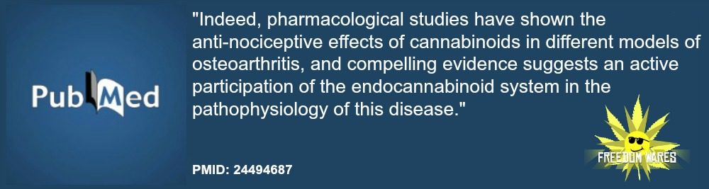 Involvement of the endocannabinoid system in osteoarthritis pain. site